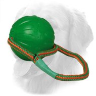 Foam Lightweight Golden Retriever Ball with Nylon String