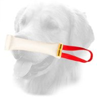 Puppy Fire Hose Golden Retriever Bite Tug with Strong Handle
