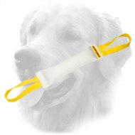 Fire Hose Golden Retriever Bite Tug with Easy to Grab Handles