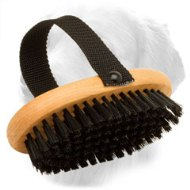 Easy in Use Bristle Wood Golden Retriever Brush