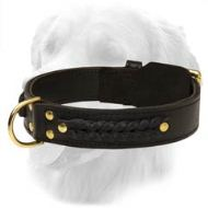 Gorgeous Wide 2 Ply Leather Golden Retriever Collar