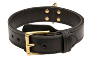 Leather Golden Retriever Collar for Protection Training