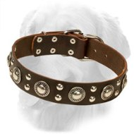Attractive Design Leather Golden Retriever Collar with Studs