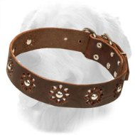 Fancy Flower Design Leather Golden Retriever Collar