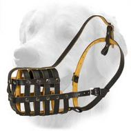 Light Weight Leather Muzzle for Universal Use