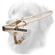 White Leather Golden Retriever Harness for Guide Dogs