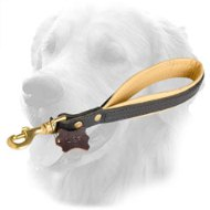 Short Leather Golden Retriever Leash