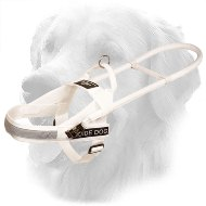 White Nylon Golden Retriever Harness for Guide and Assistance
