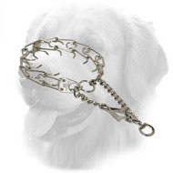 Chrome Plated Steel Golden Retriever Pinch Collar with Swivel