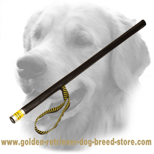 Golden Retriever Agitation Stick for Schutzhund Training