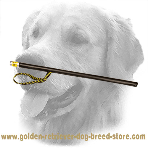 Leather Covered Golden Retriever Agitation Stick with Loop