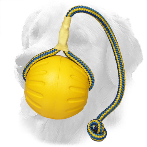 Foam Golden Retriever Ball with Durable Rope