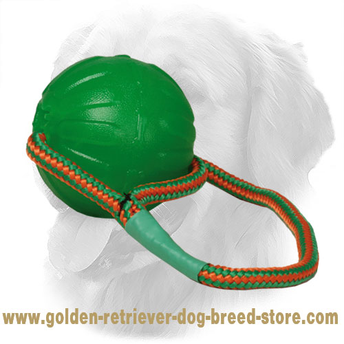 Golden Retriever Ball with Durable Rope