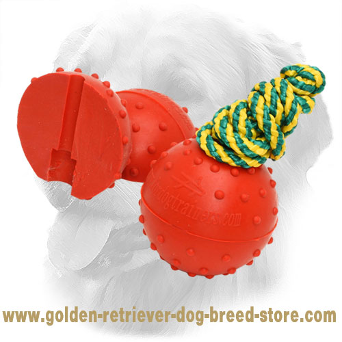 Rubber Golden Retriever Ball with Strong Nylon Rope