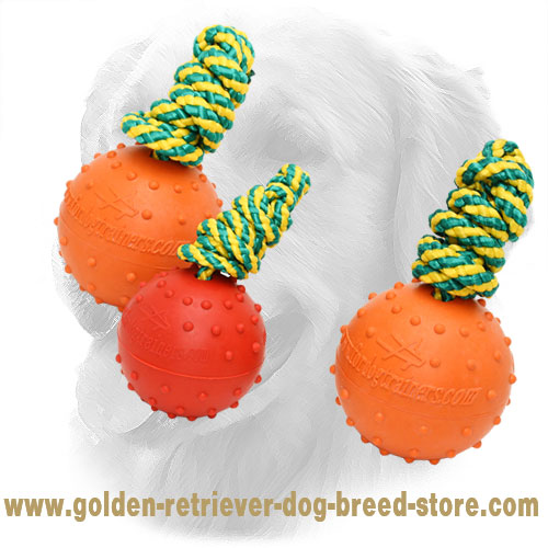 Rubber Golden Retriever Ball with Dotted Surface