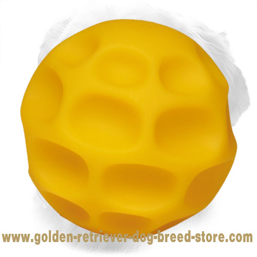 Tetraflex Golden Retriever Ball for Chewing