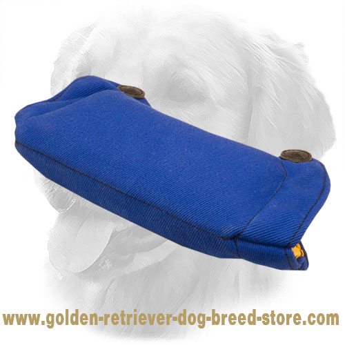 French Linen Golden Retriever Bite Builder for Basic Puppy Training