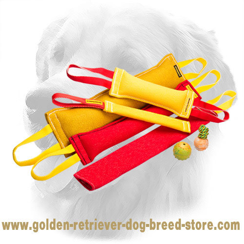Convenient in Use French Linen Golden Retriever Bite Training Set for Training