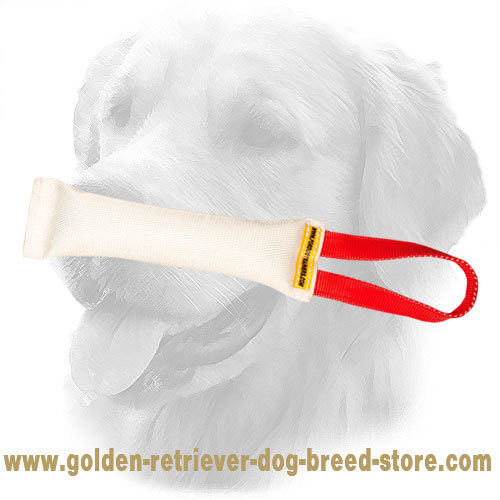 Durable Golden Retriever Bite Tug for Puppies