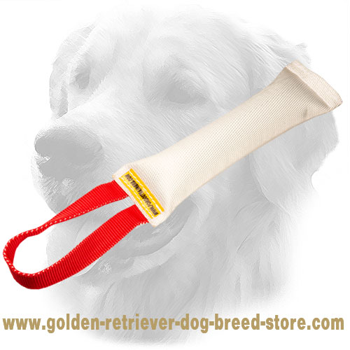 Fire Hose Golden Retriever Bite Tug with Comfy Handle