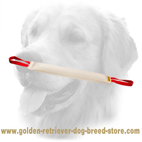 Fire Hose Golden Retriever Bite Tug with Nylon Handles
