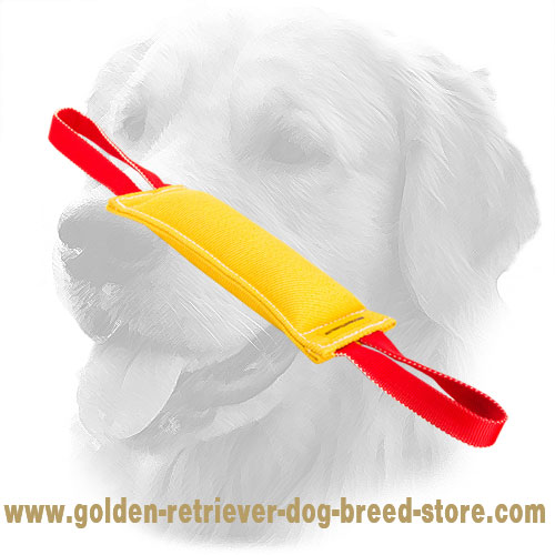 Extra Durable Golden Retriever Bite Tug with Two Handles
