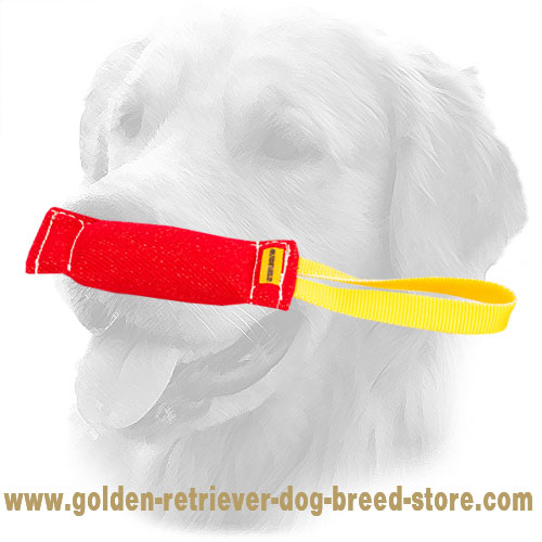French Linen Golden Retriever Bite Tug with One Handle