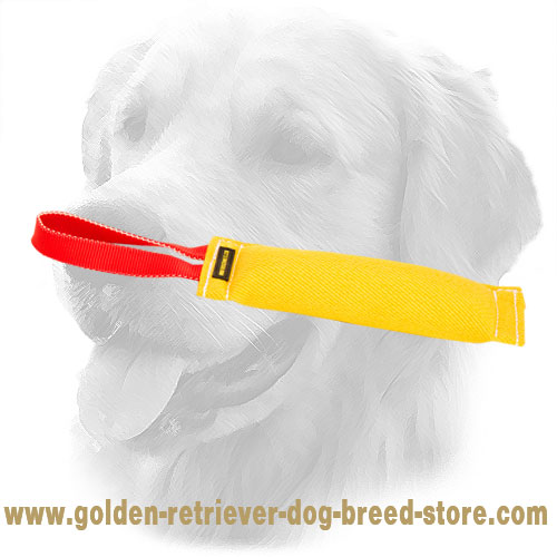 Synthetic Golden Retriever Bite Tug with One Handle