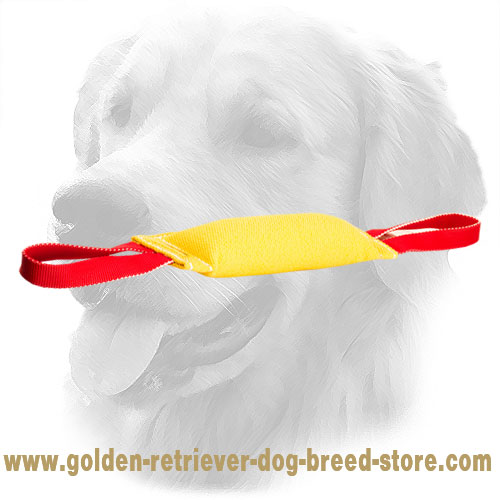 French Linen Golden Retriever Bite Tug for Retrieve Training