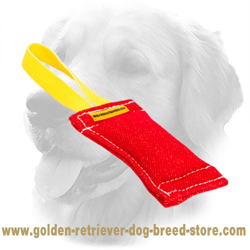 French Linen Golden Retriever Bite Tug for Young Dogs