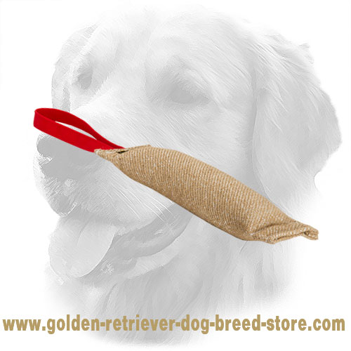Jute Golden Retriever Bite Tug for Puppy Training