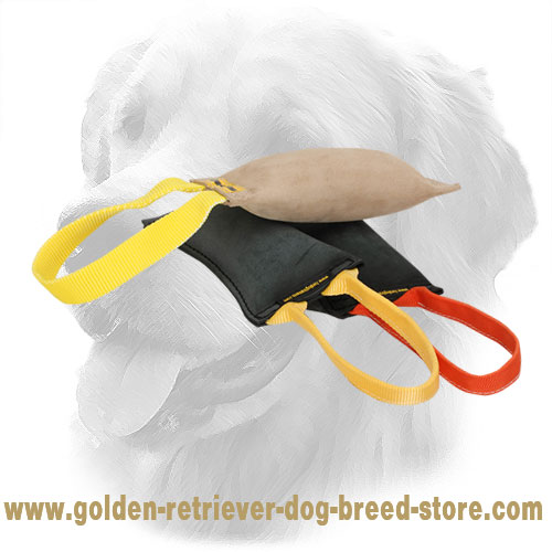 Golden Retriever Bite Tug with Comfortable Handle