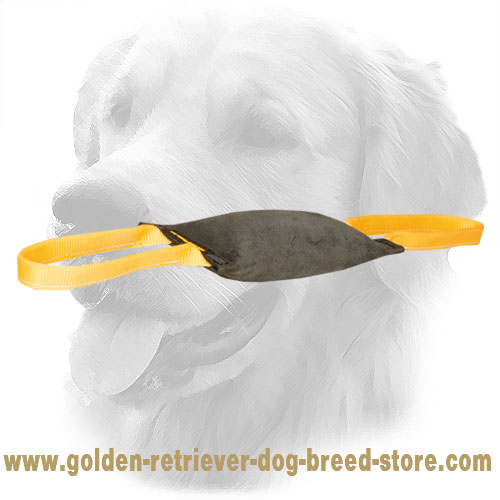 Golden Retriever Bite Tug with Comfortable Handles