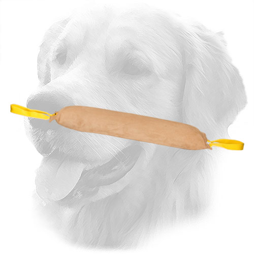 Golden Retriever Bite Tug for Large Dog Training