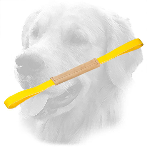 Golden Retriever Bite Tug for Puppies