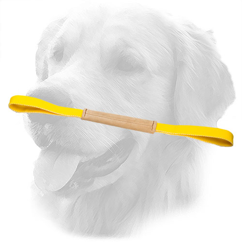 Golden Retriever Bite Tug with Nylon Handles