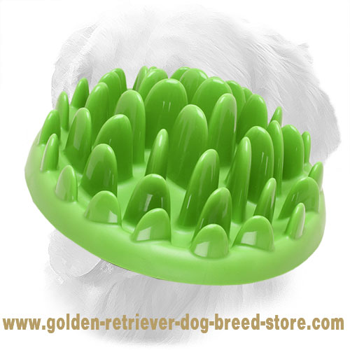 Grass Shape Plastic Slow Golden Retriever Feeder