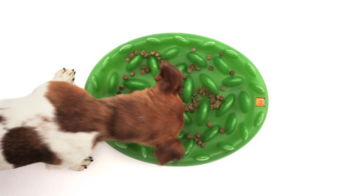 Grass Shape Plastic Golden Retriever Feeder to Slow Down Feeding