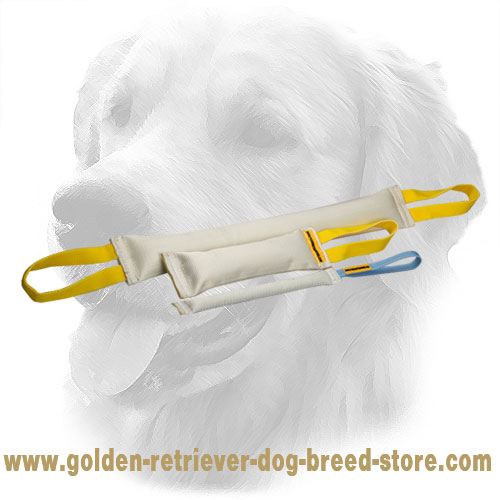 Fire Hose Golden Retriever Bite Training Set of 3 Dog Items