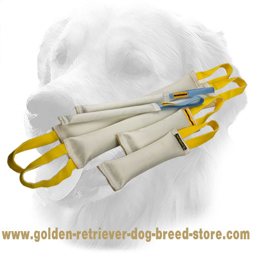 Fire Hose Golden Retriever Bite Training Set of 6 Dog Items