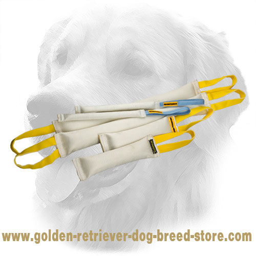 Fire Hose Golden Retriever Bite Training Set for Retrieve Item Training