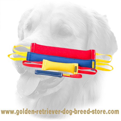 French Linen Golden Retriever Bite Training Set of 4 Tools