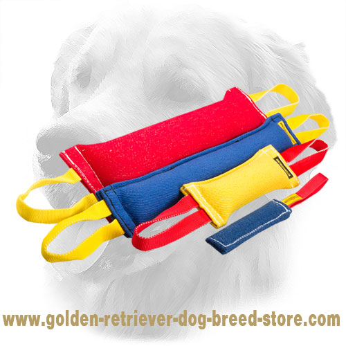 French Linen Golden Retriever Bite Training Set for Adult Dogs