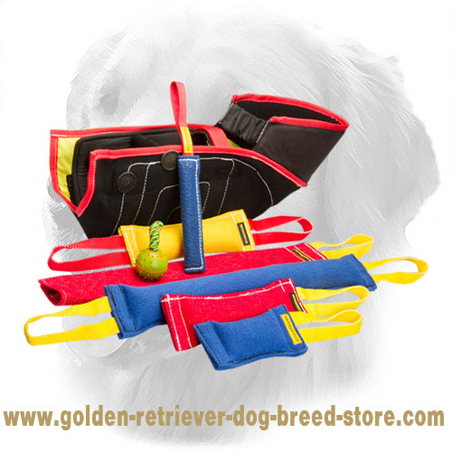 French Linen Golden Retriever Bite Training Set for Puppies