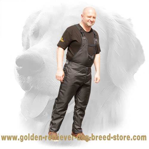 Light Weight Scratch Pants for Golden Retriever Training