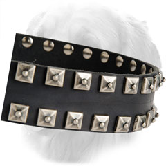 Decorations on Leather Golden Retriever Collar