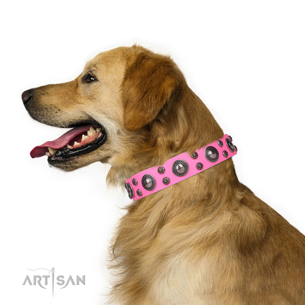 Comfy wearing decorated dog collar of top quality genuine leather