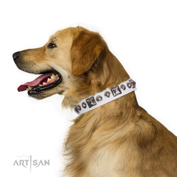 Designer adorned leather dog collar for basic training