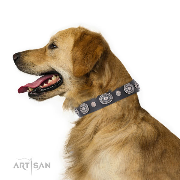 Rust resistant buckle and D-ring on genuine leather dog collar for daily walking