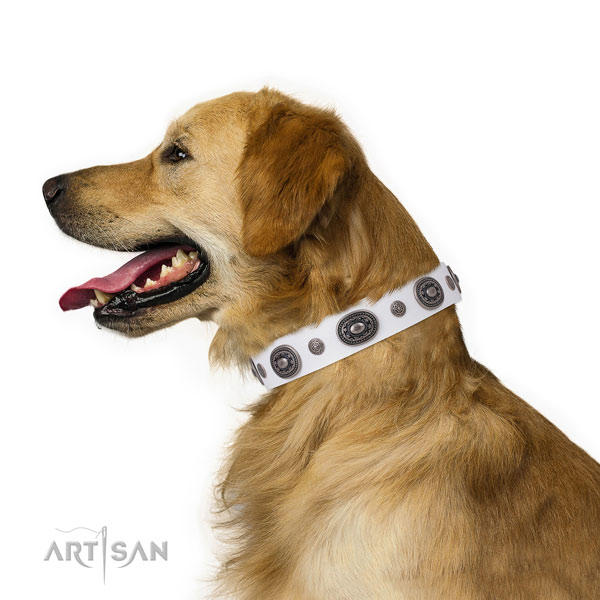 Full grain leather dog collar with strong buckle and D-ring for walking